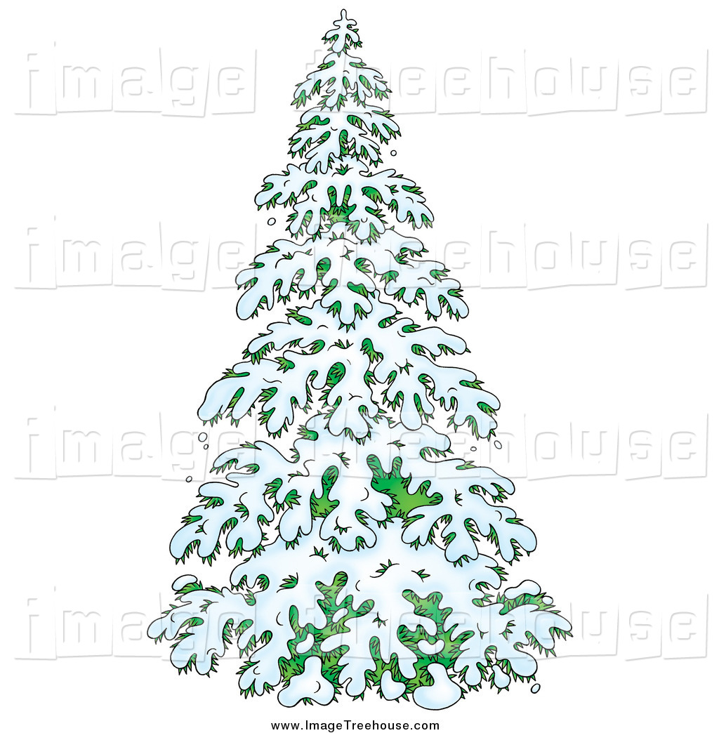 Clipart of an Evergreen Tree Flocked in Snow by Alex Bannykh.
