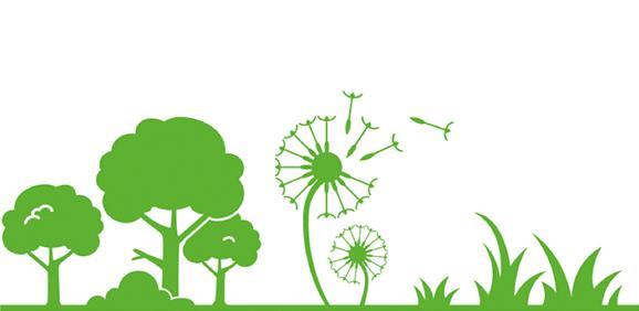 Pollen Allergies: Types, Symptoms & Relief.