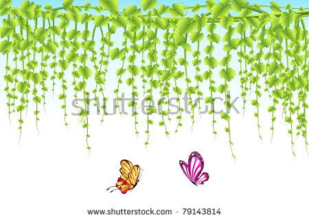 Flower Creeper Stock Photos, Royalty.