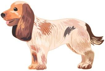 Dog clip art.