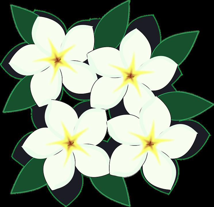 Flor clipart #13
