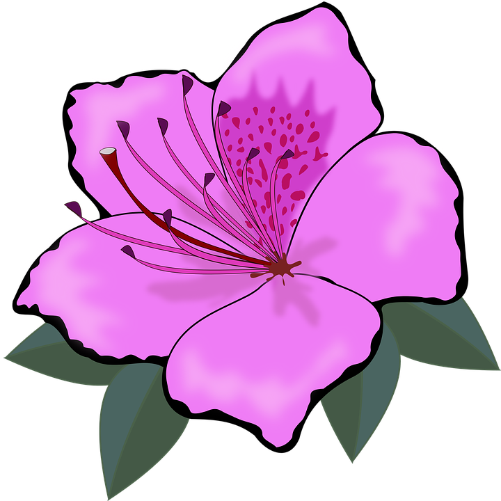 Free vector graphic: Clip Art, Flor, Flora, Flores.