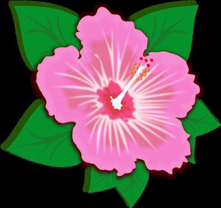 Flor clipart #10