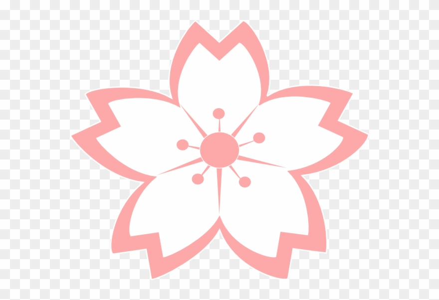 Cherry Blossom Vector, Sakura Cherry Blossom, Japanese.
