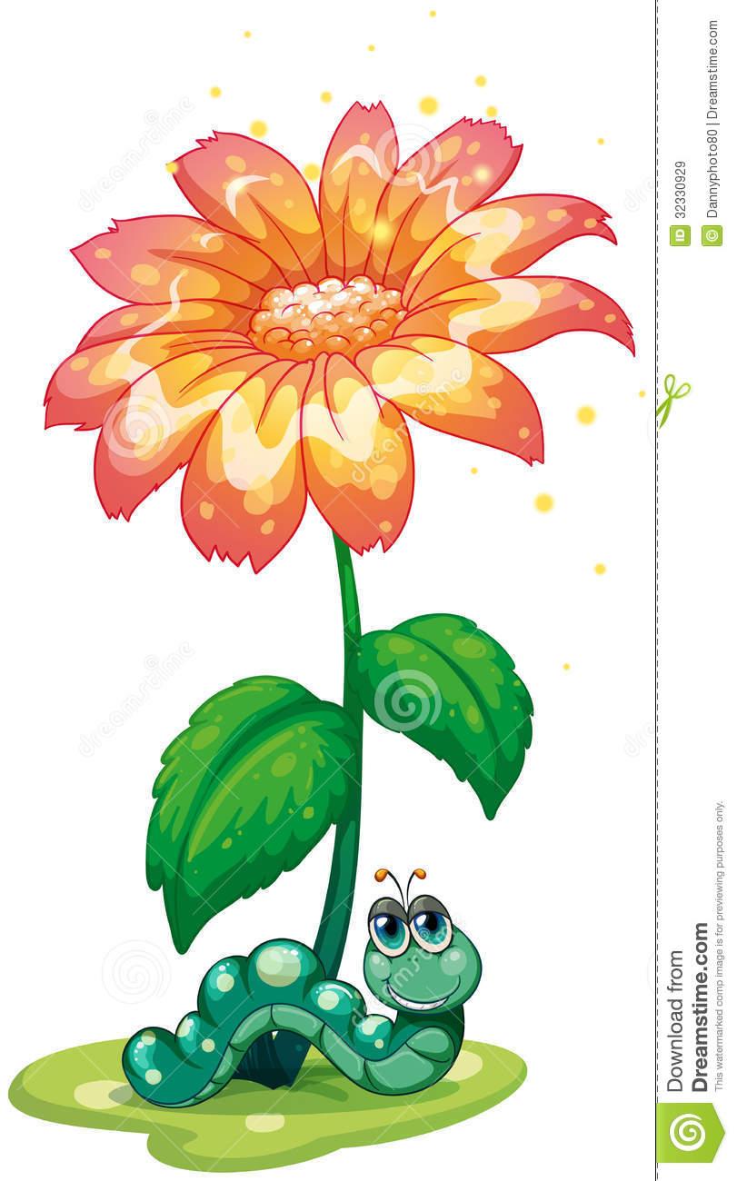 Una Lombriz De Tierra Debajo De La Flor Imágenes de archivo libres.