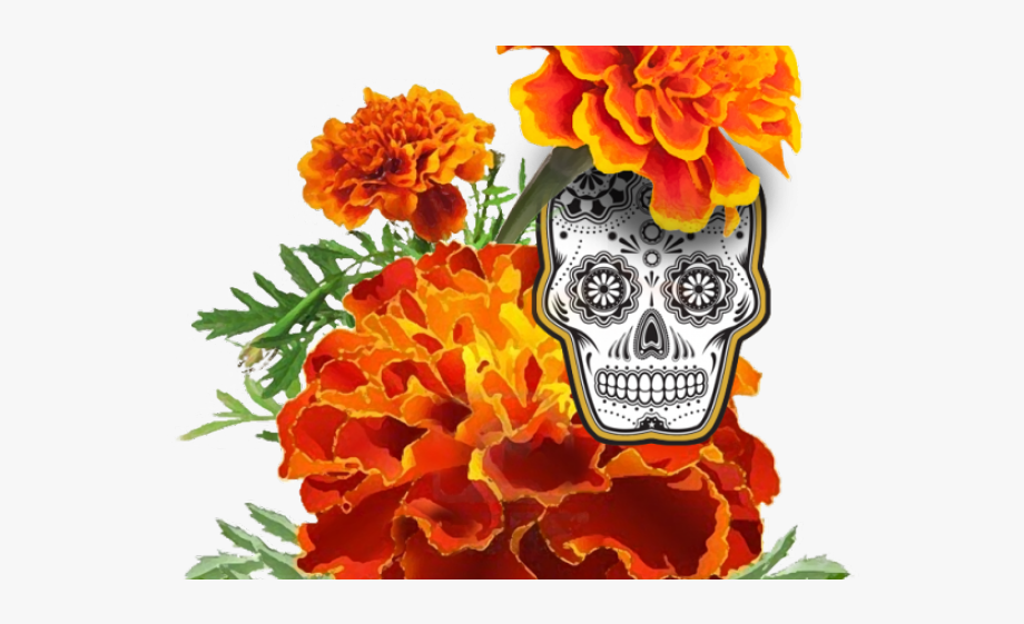 Orange Flower Clipart Dead.
