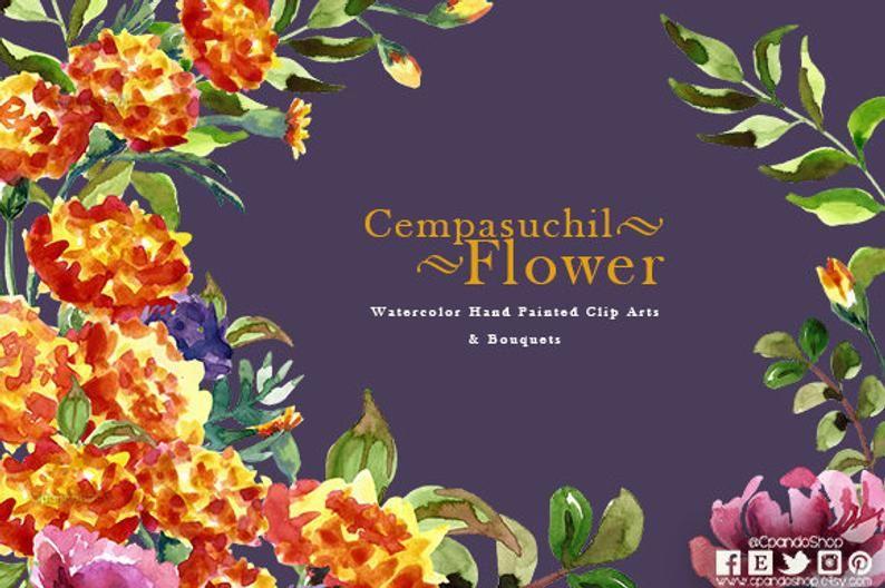 Flores de Cempasúchil pintadas a mano, tradiciones mexicanas.