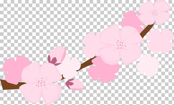 Festival nacional de la flor de cerezo, flor s PNG Clipart.