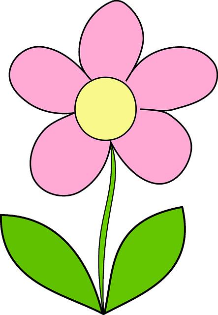 Desenho de flor png 6 » PNG Image.