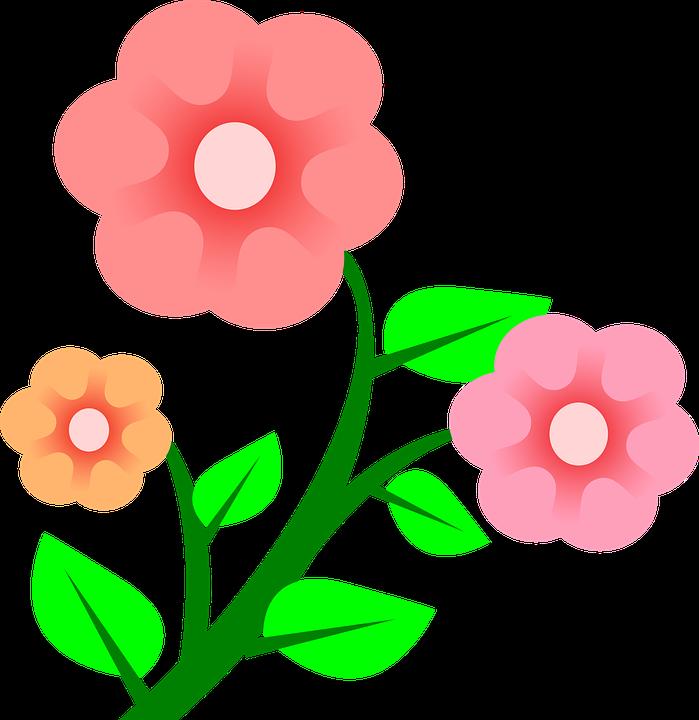 Flor png desenho 7 » PNG Image.