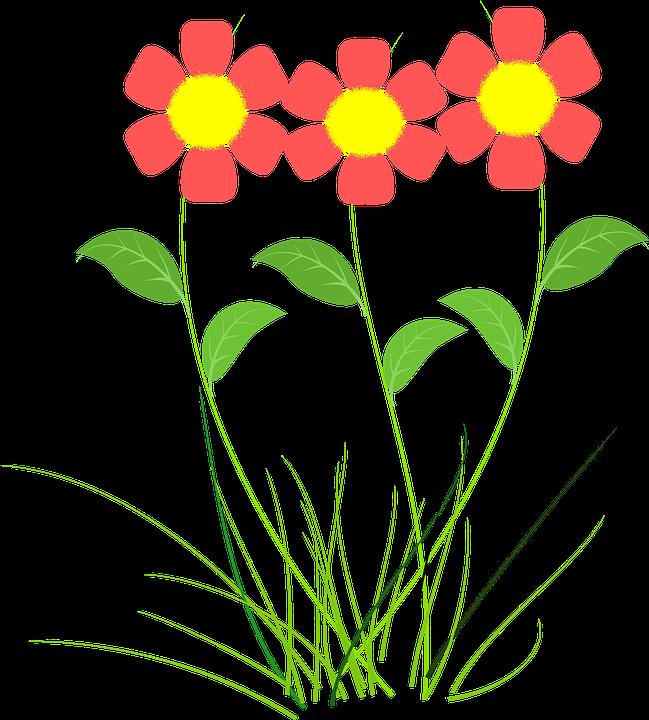 Flor png desenho 6 » PNG Image.