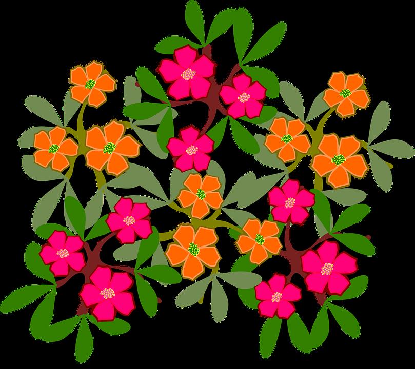 Flora clipart.