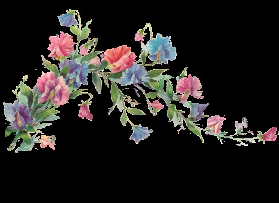 Florais png 2 » PNG Image.