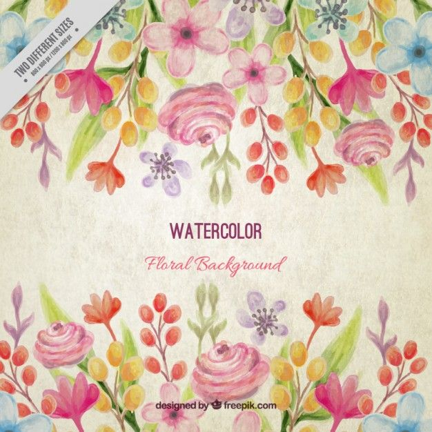 Vintage watercolor floral background with leaves Vector.