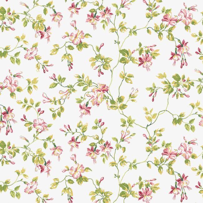 Floral Background Shading High Resolution Images, Frame, PNG.