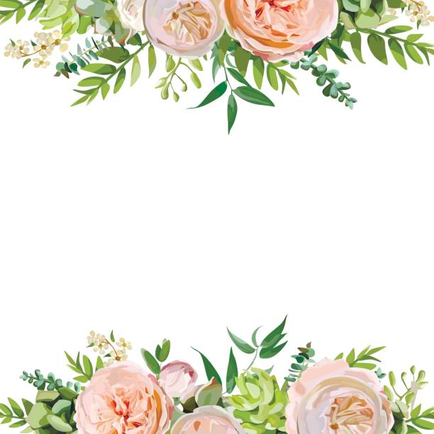 Best Floral Border Illustrations, Royalty.