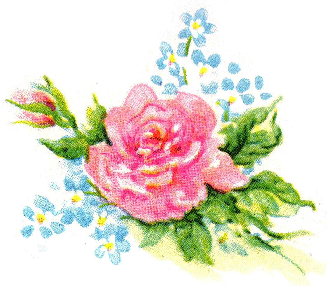 Free Floral Clip Art, Download Free Clip Art, Free Clip Art.