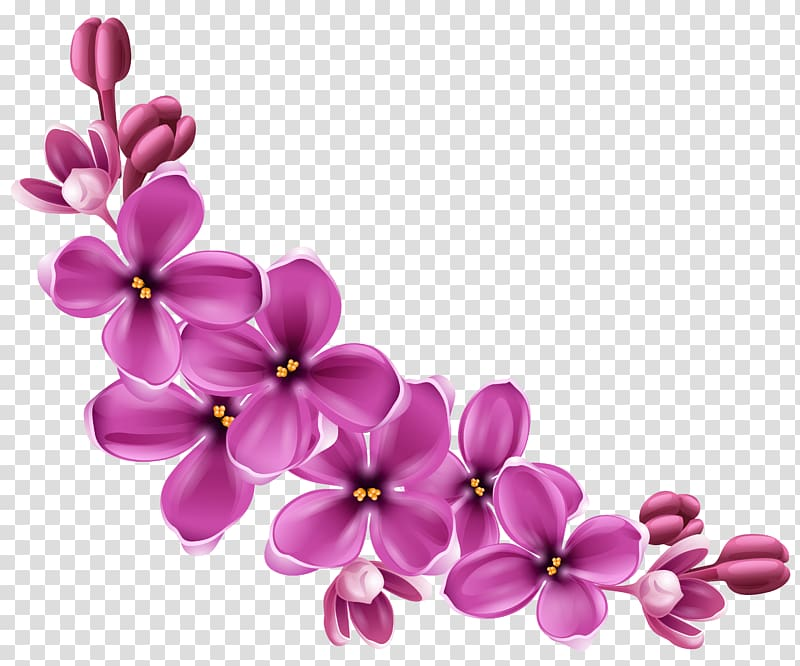 Flower , Spring Pink Floral Decor , purple flowers painting.