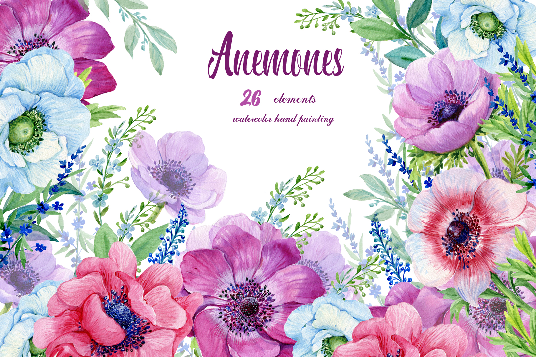 Anemones Watercolor . Flowers Clipart . Floral Elements.
