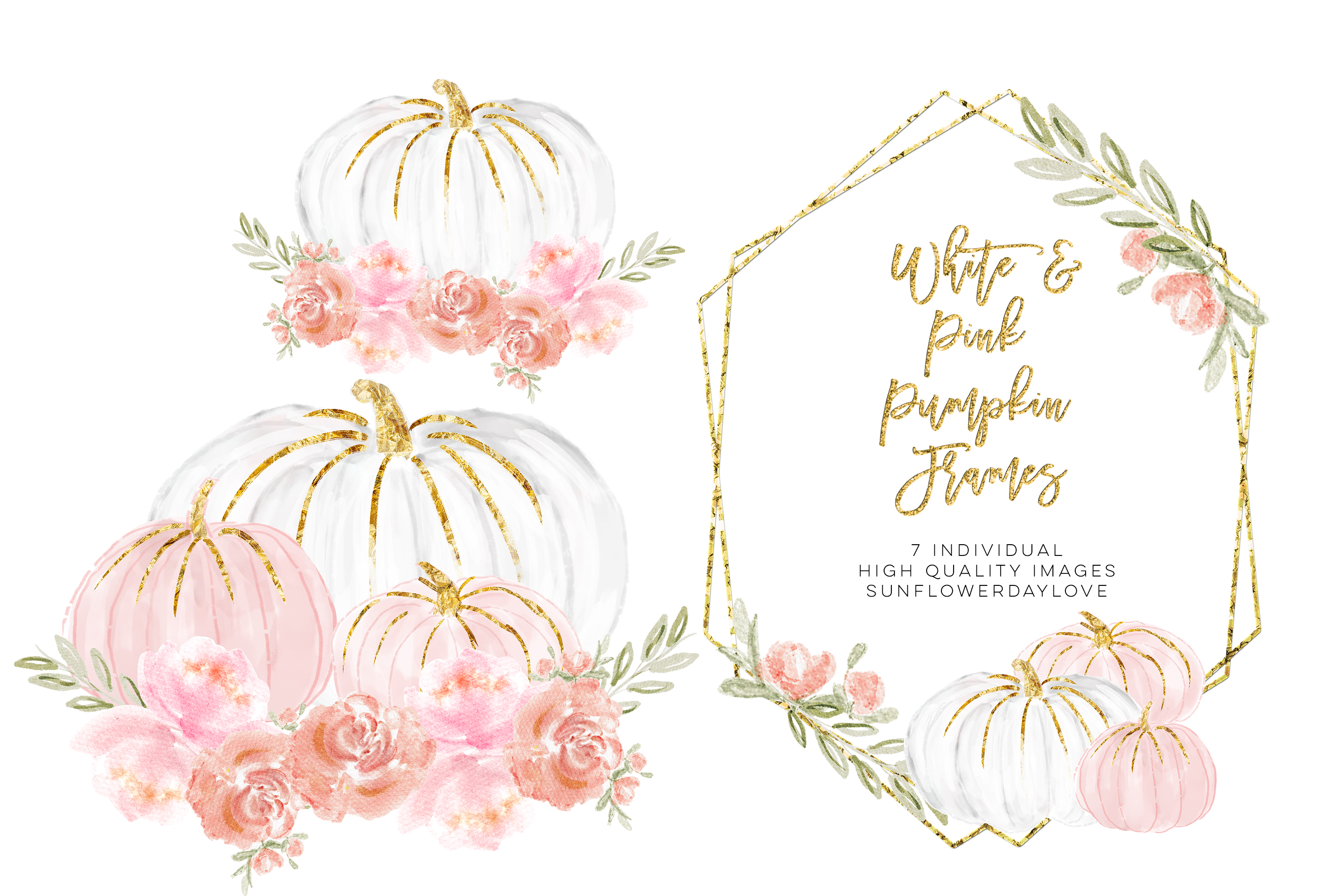 Watercolor Floral Frame Clipart, White and Pink Pumpkins.