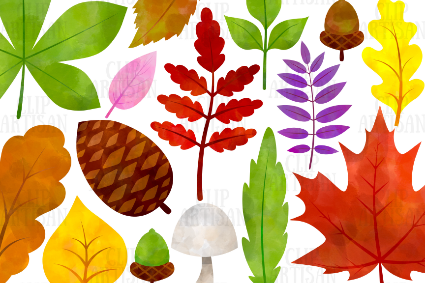 Watercolor Fall Leaves Clipart, Autumn Floral Clip Art.