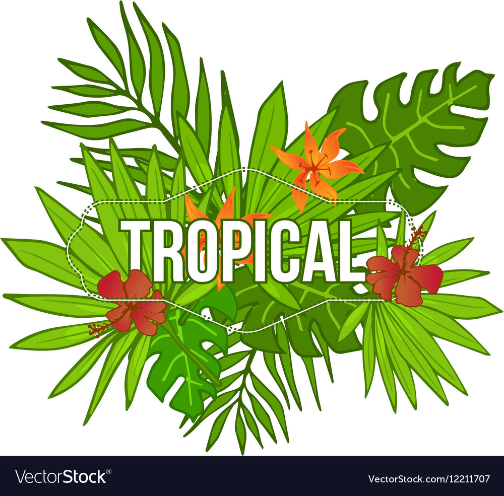 Summer tropical background of palm leaves flower.