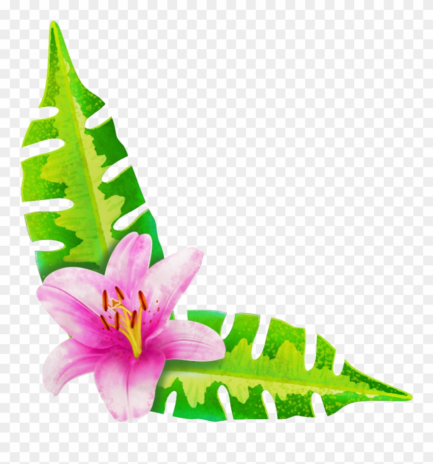 Painted A Flower Two Leaves Png Transparent.