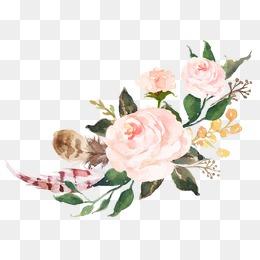 Floral Png & Free Floral.png Transparent Images #2460.