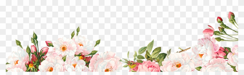 Watercolour Flower Border Png Image Free Searchpng.