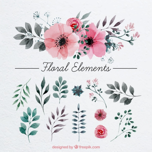 Flower Vectors, Photos and PSD files.