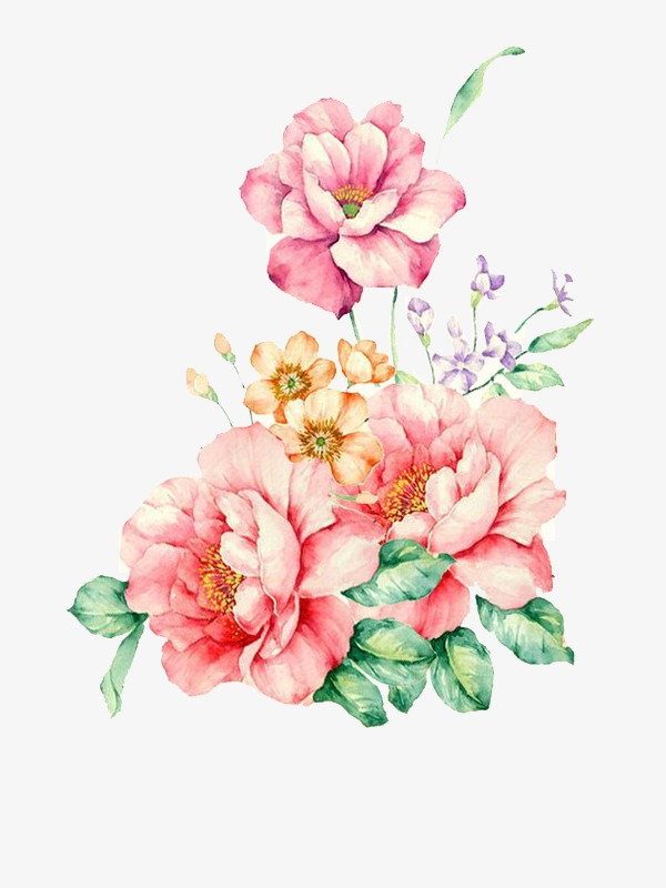 Floral Watercolor, Watercolor Clipart, Flowers, Painted PNG.