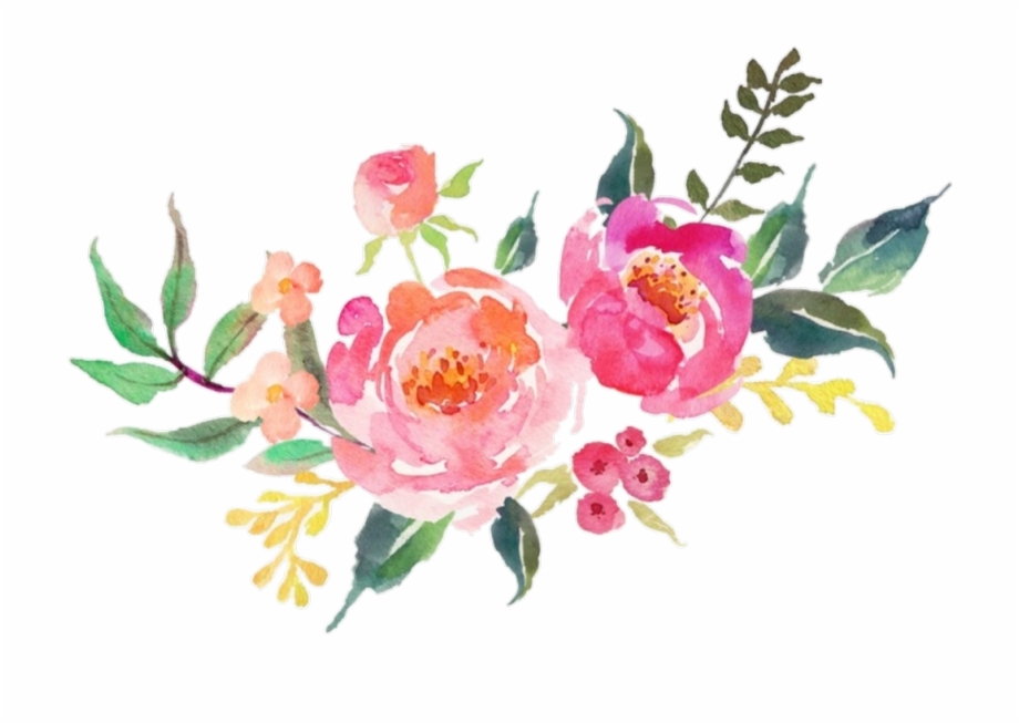 flower #pink #flowers #watercolor #nature.
