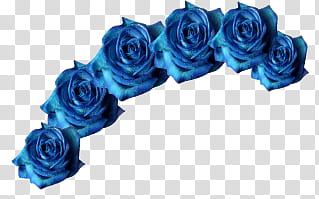 Coronita de flores azules transparent background PNG clipart.