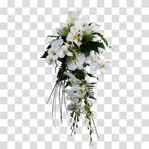 Flores Blancas PNG clipart images free download.