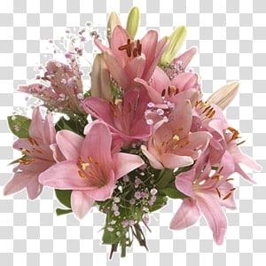 Flores Blancas transparent background PNG cliparts free.