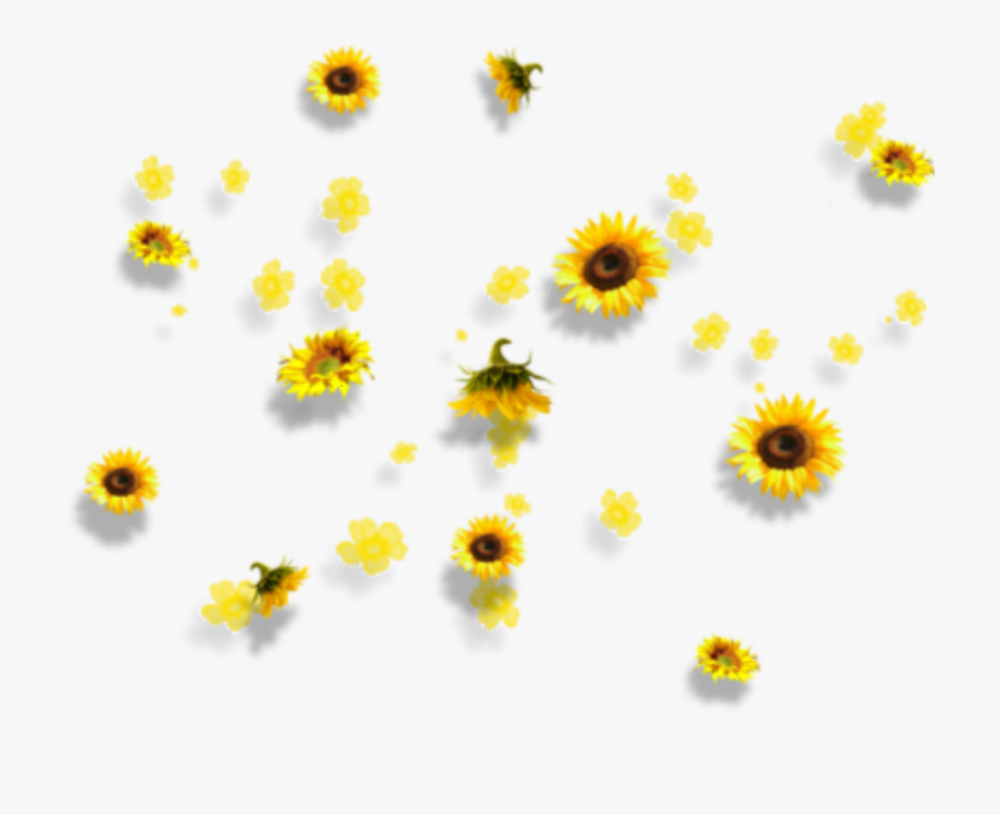 yellow #flowers #aesthetic #tumblr #falling.