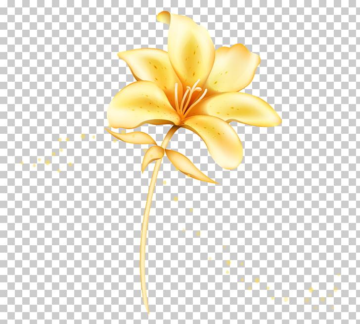Ilustración de flor de pétalo amarillo, flor de lilium.