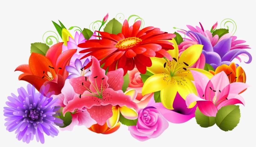 Imágenes De Flores De Colores.