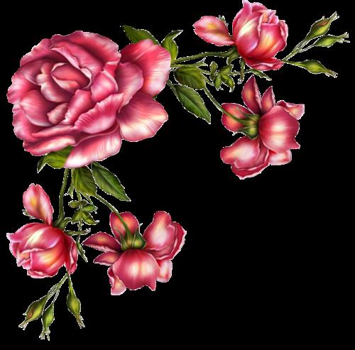 Canto De Flores Png Vector, Clipart, PSD.