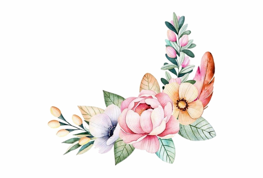 pngstickers #png #watercolor #illustration #flowers.