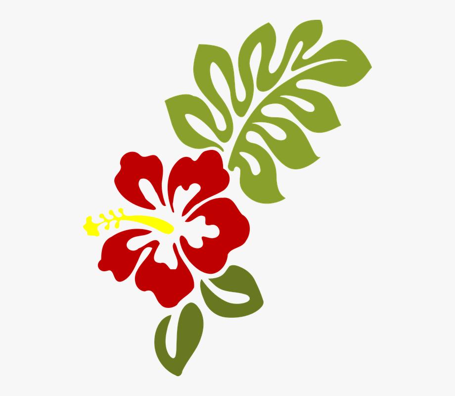 Hibiscus Clipart Eps.