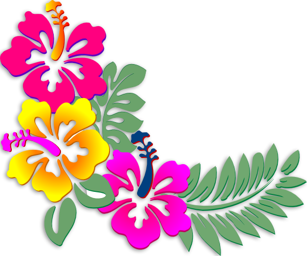 Download Hibiscus Clipart Coral.