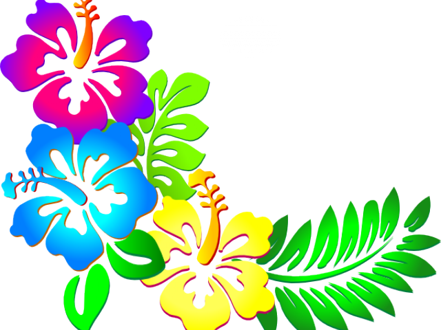 Hibiscus Clipart Png Tumblr.