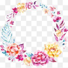 Hermosas Flores De Las Fronteras.