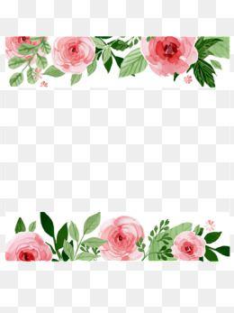 Flor Hermosa Fronteras, Las Fronteras De Flores, Pintado A.