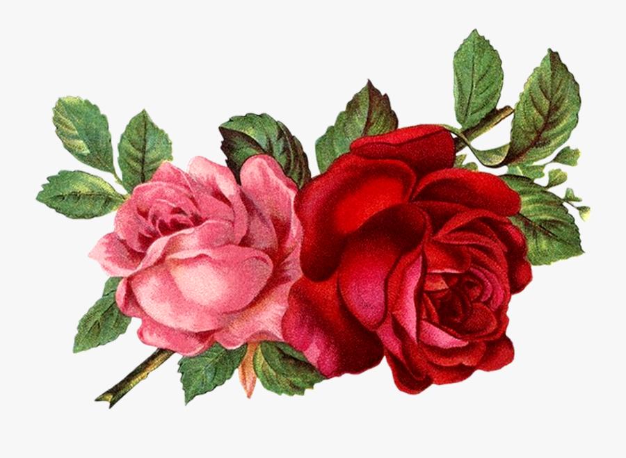 Flores Rojas Vintage Png Clipart , Png Download.
