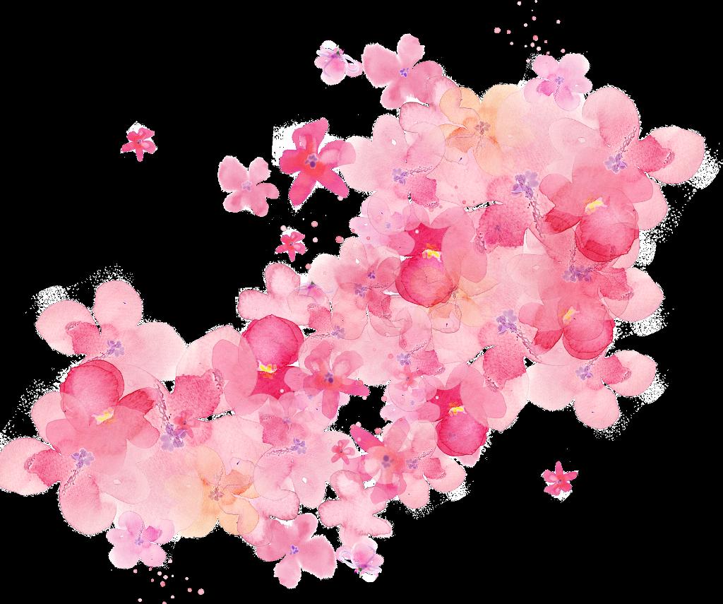 flores rosas art arte pintura clipart clip art petalas.