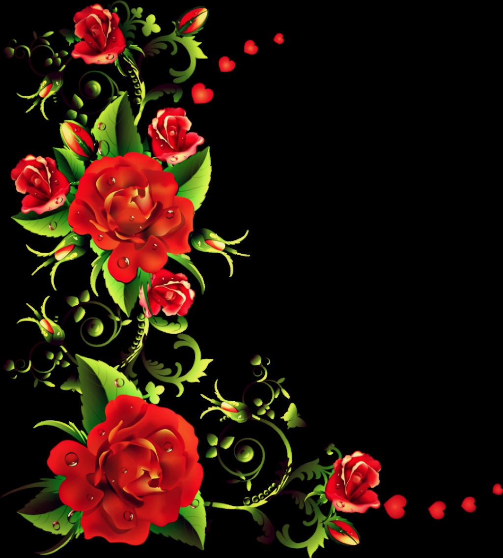 HD #flores #rosas #marco.