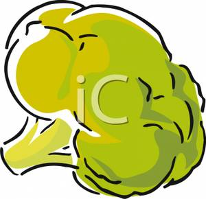 Floret of Broccoli Clipart Picture.