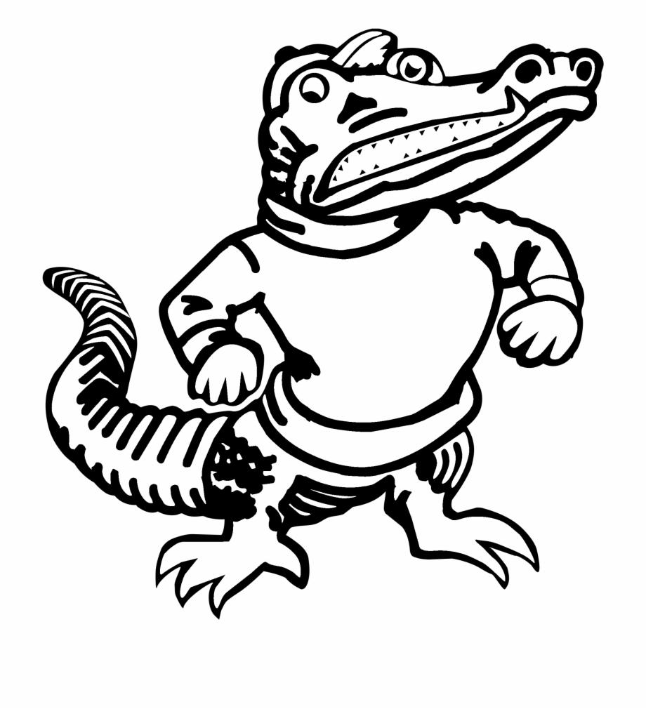 Amphibian Clipart Florida Gator.